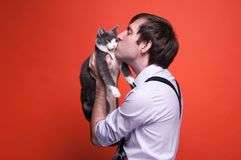 Handsome man holding and kissing on muzzle grey and white cat royalty free stock photos
