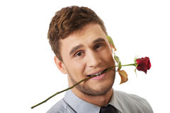 Handsome man holding red rose in his mouth. Stock Photos