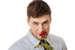 Handsome man holding red rose. Stock Photos