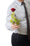 Handsome man holding red rose. Royalty Free Stock Photos