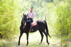 Handsome man on horse. Handsome man in pink shirt ride on the black horse in green forest Stock Photography
