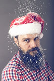 Handsome  man with long beard wearing santa cap. Royalty Free Stock Photo