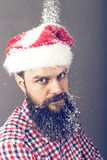 Handsome  man with long beard wearing santa cap. Royalty Free Stock Photography