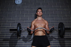 Handsome man with muscular body exercising for biceps arms. Handsome man with muscular body exercising with barbell at gym Stock Photo