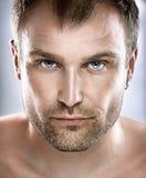 Handsome Man Portrait Stock Images