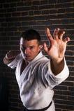 Handsome man practicing Brazilian jiu-jitsu. On brick wall background Stock Images