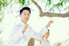 Handsome man practicing thai chi Royalty Free Stock Image