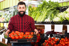 Handsome man seller offering tomatoes in shop Stock Photography