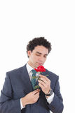 Handsome man in a suit holding a rose and smells in his hand Stock Images
