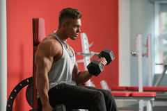 Handsome man training with dumbbells in gym Royalty Free Stock Photo