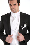 Handsome man in tuxedo stock images