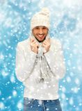 Handsome man in warm sweater, hat and scarf Royalty Free Stock Image