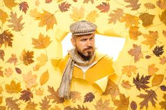 Handsome man wearing in autumn clothes on autumn sunny day. Autumn discounts on clothes. Sale of men`s underwear. Autumn stock photo