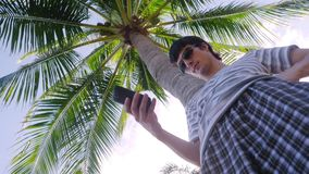 Handsome man wearing sunglasses using mobile smartphone outdoor under palm tree. 3840x2160. Man using mobile smartphone outdoor under palm tree stock video footage