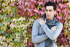 Handsome man wearing winter clothes in autumn leaves background Stock Image