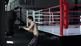 Handsome masculine athlete boxer mma fighter training stock footage