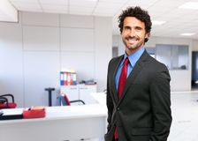 Handsome mature business man portrait Stock Image