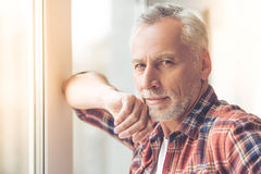 Handsome mature man stock photography
