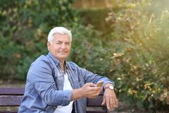 Handsome mature man with cell phone. In park Royalty Free Stock Image