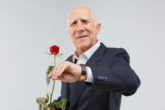 A mature man, in suit, holds red rose, watches the time and smiles. Isolation. stock photography