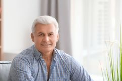 Handsome mature man. At home stock photos