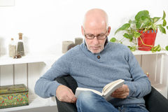Handsome mature man read a book Royalty Free Stock Image