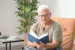 Handsome mature man reading book. At home Royalty Free Stock Photography