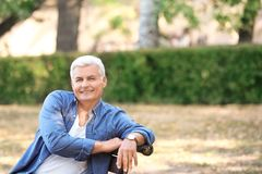 Handsome mature man sitting on bench. In park Royalty Free Stock Images