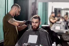 Handsome man with beard sits at a barber shop in front the mirror. Barber makes a hair trim. royalty free stock image