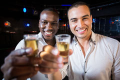 Handsome men drinking together Royalty Free Stock Image