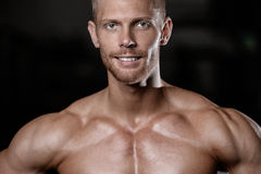 Handsome men face close up portrait in the gym fitness and bodybuilding Royalty Free Stock Photography