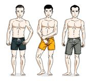 Handsome men group standing wearing beach shorts. Vector differe Stock Photography