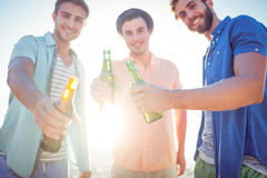 Handsome men toasting Stock Photography