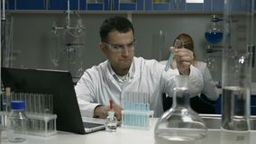 Male scientist working with tubes in laboratory stock video