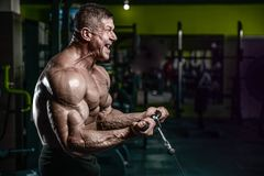 Handsome model young man training arms in gym. Handsome young muscular Caucasian man of model appearance working out training arms in gym gaining weight pumping Royalty Free Stock Image