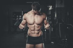 Handsome model young man training arms in gym Stock Photography
