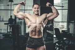 Handsome model young man training arms in gym Royalty Free Stock Photos
