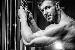 Handsome model young man training arms in gym Royalty Free Stock Image
