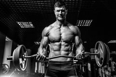 Handsome model young man training arms in gym Stock Image