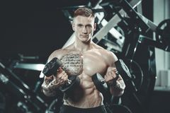 Handsome model young man training arms in gym. Handsome muscular Caucasian man of model appearance working out training arms in gym gaining weight pumping up Stock Photo