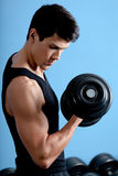 Handsome muscular athlete uses his dumbbell royalty free stock photos