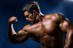 Handsome muscular bodybuilder demonstrates his muscles royalty free stock photography