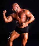 Handsome muscular bodybuilder Royalty Free Stock Photos