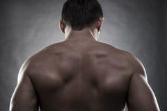 Handsome muscular bodybuilder posing on gray background. Low key studio shot Stock Photos