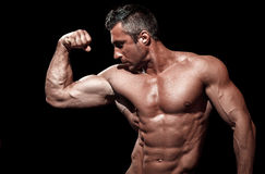 Handsome muscular bodybuilder posing Royalty Free Stock Photo