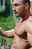 Handsome, muscular bodybuilder shirtless sitting on the grass Royalty Free Stock Images