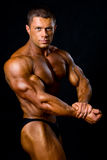 Handsome muscular bodybuilder in studio Stock Images