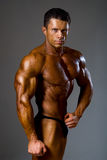 Handsome muscular bodybuilder in studio Royalty Free Stock Images