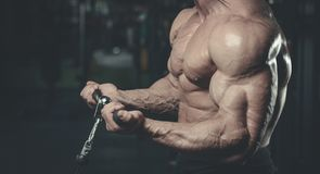 Handsome model young man training arms in gym. Handsome muscular Caucasian man of model appearance working out training arms in gym gaining weight pumping up Royalty Free Stock Photos