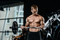 Handsome model young man training arms in gym. Handsome muscular Caucasian man of model appearance working out training arms in gym gaining weight pumping up Royalty Free Stock Photo